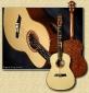 de_Jonge_Sapele_guitar