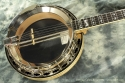 Deering Calico Banjo 1994 top