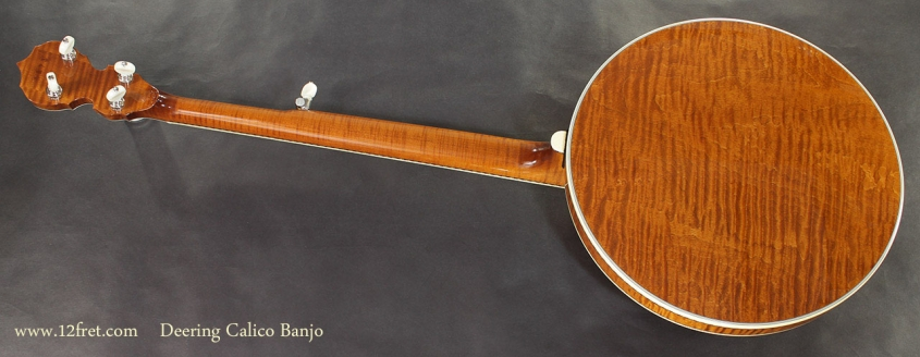 Deering Calico Banjo full rear view