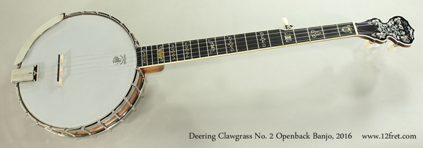 Deering Clawgrass No. 2 Openback Banjo, 2016 Full Front View