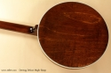 Deering Deluxe Maple Banjo back