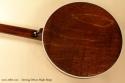 Deering Deluxe Maple Banjo back
