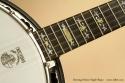Deering Deluxe Maple Banjo inlay