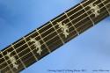 Deering Eagle II Six String Banjo Fingerboard Inlay View