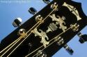 Deering Eagle II Six String Banjo Headstock Inlay View
