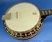 deering-eagle-II-6-string-banjo-top-1
