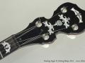 Deering Eagle II 5-String Banjo, 2011 Head Front