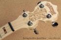 Deering Goodtime Special Banjo head front