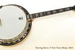 Deering Sierra 17-Fret Tenor Banjo, 2010      Full Front View