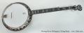 Deering Sierra Mahogany 5 String Banjo Full Front View