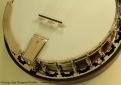 Deering-vega-bluegrass-wonder-ss-tailpiece-1