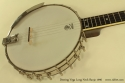 Deering Vega Long Neck Banjo top