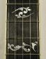 Deerring 35th Anniversary Limited Edition Banjo  Inlay at frets 10 and 12
