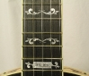 Deerring 35th Anniversary Limited Edition Banjo  Upper neck inlays and plaque
