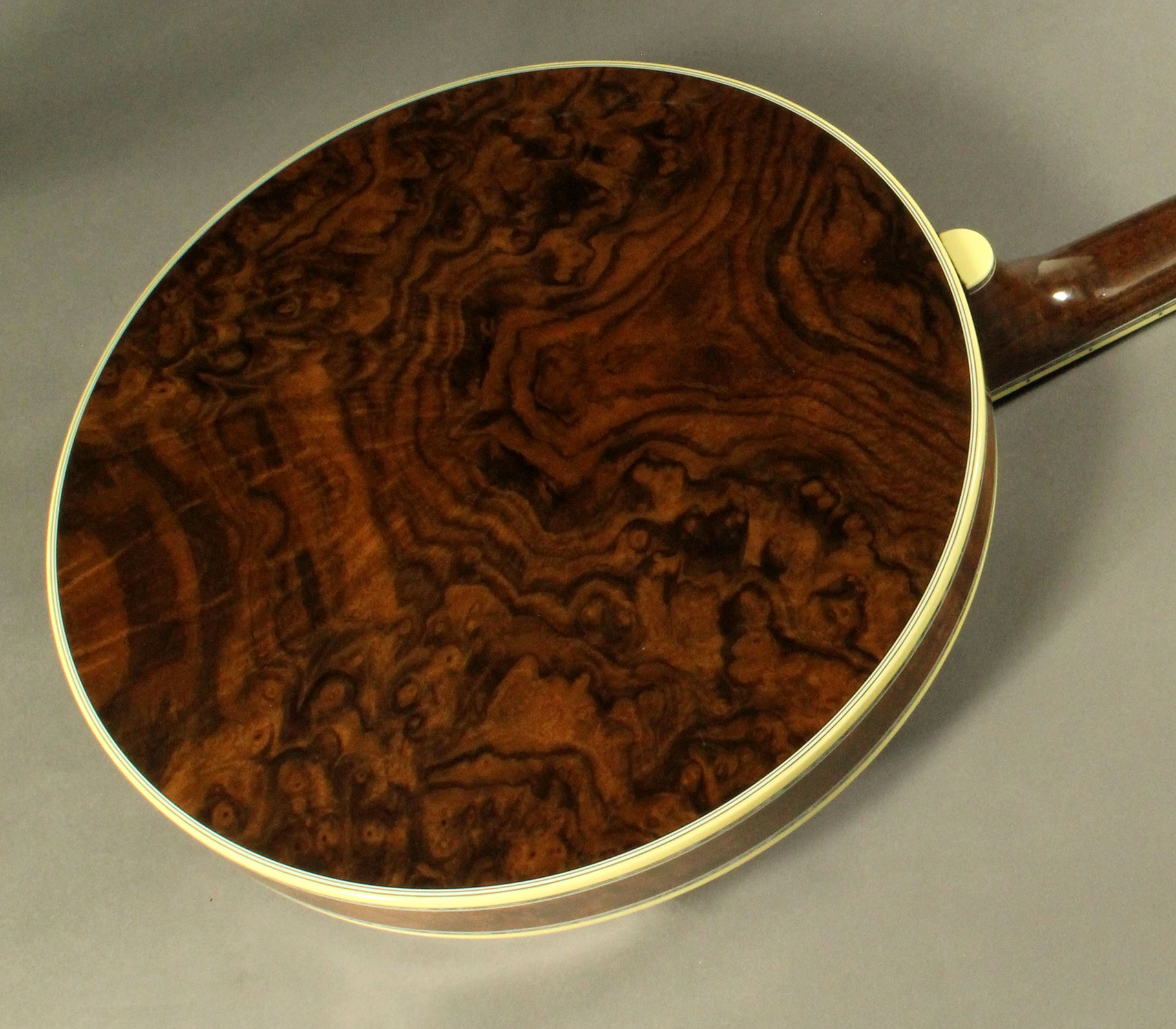 Deering_GDL_walnut_resonator_1820