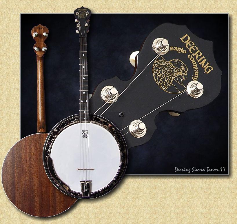 Deering Sierra Tenor Banjo - www 12fret com