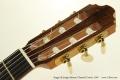 Sergei de Jonge 630mm Classical Guitar, 2007 Head Front View