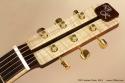DK Guitars Forte 2013 head front