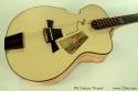 DK Guitars Picasso top
