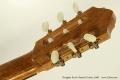 Douglass Scott Classical Guitar, 2008 Head Rear View