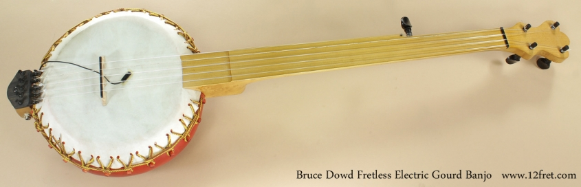 Bruce Dowd Fretless Electric Gourd Banjo full front view