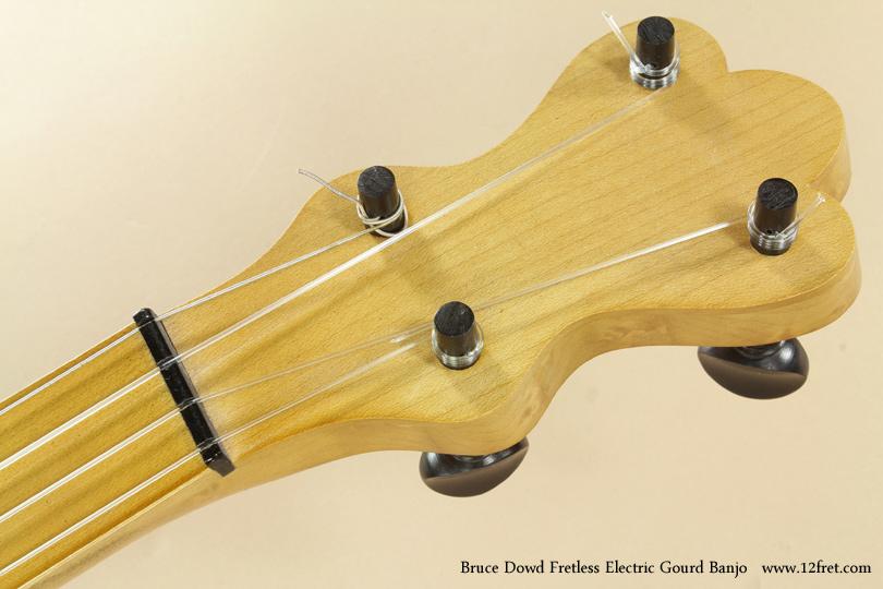 Bruce Dowd Fretless Electric Gourd Banjo head front