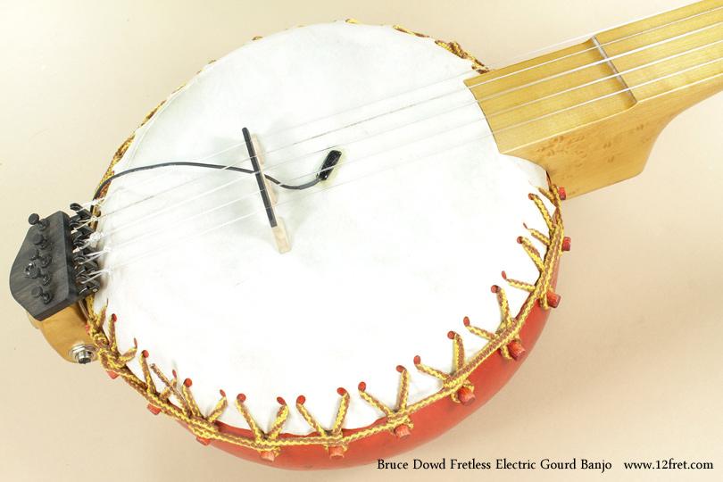 Bruce Dowd Fretless Electric Gourd Banjo top
