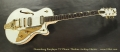 Duesenberg Starplayer TV Phonic Thinline Archtop Electric Full Front View