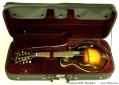 Eastman-815v-mandolin-ss-case-1