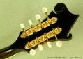 Eastman-815v-mandolin-ss-head-rear-1