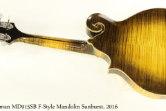 Eastman MD915SB F-Style Mandolin Sunburst, 2016 Full Rear View