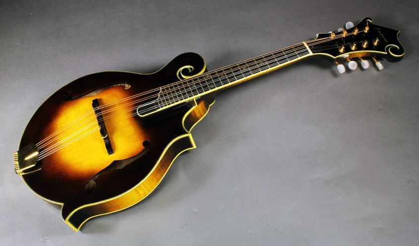 Eastman_md815v_cons_full_1