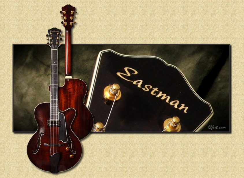 Eastman_T145_Thinline