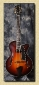 Eastman_T145sm_Sunburst