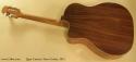 Egan Custom Tenor Guitar 2012 full rear view