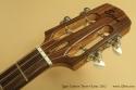 Egan Custom Tenor Guitar 2012 head front