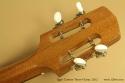 Egan Custom Tenor Guitar 2012 head rear
