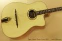 Egan Custom Tenor Guitar 2012 top