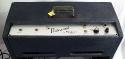 Epiphone_professional_1963_EA-7P_amp_controls_1