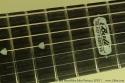ernie-ball-mm-John-Petrucci-jpxi-7-inlay-1