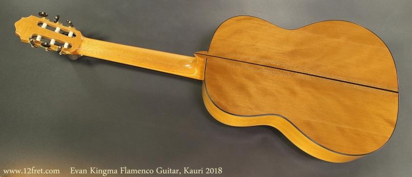 Evan Kingma Flamenco, Kauri 2018 Full Rear View