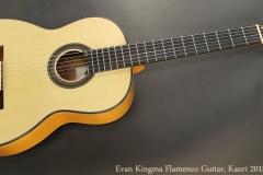 Evan Kingma Flamenco, Kauri 2018 Full Front View