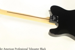 Fender American Professional Telecaster Black Full Rear View