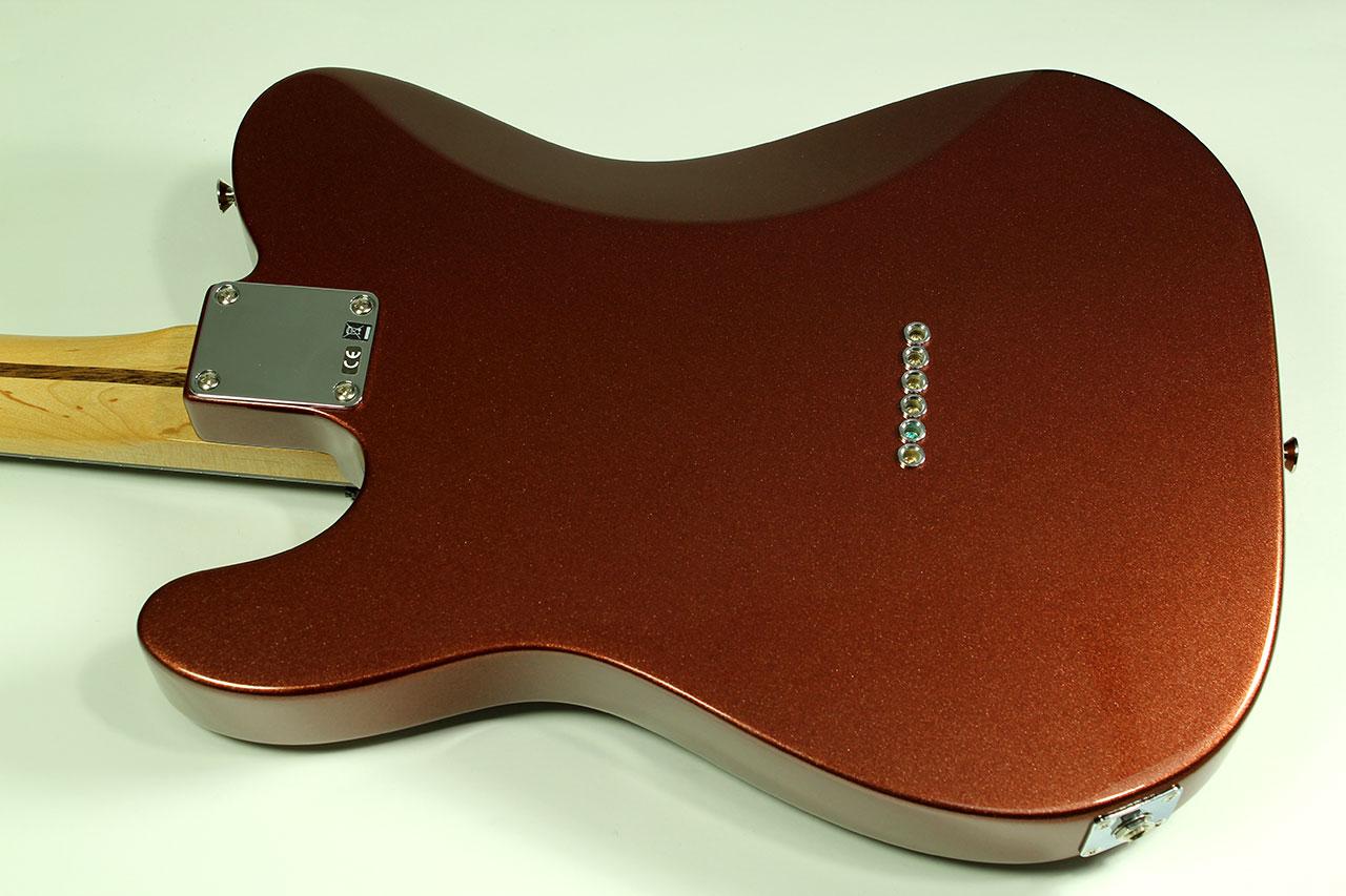 Telecaster Back Images - Reverse Search on