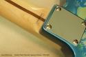 Fender Japan Telecaster Floral 1999 - 2002 serial