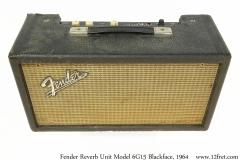 Fender Reverb Unit Model 6G15 Blackface, 1964 Full Rear View
