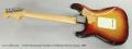 Fender Stratocaster Sunburst Solidbody Electric Guitar, 1969 Full Rear VIew