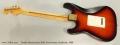 Fender Stratocaster 50th Anniversary Sunburst, 1996 Full Rear View
