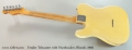 Fender Telecaster with Humbucker, Blonde, 1966 Full Rear View