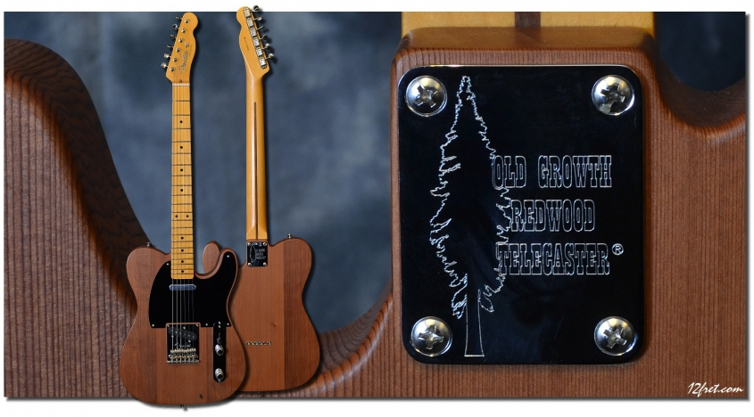 Fender_Telebration_Redwood